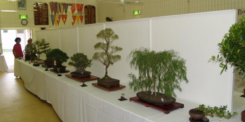 Cairns Bonsai Society Inc